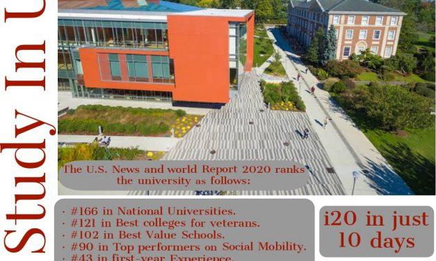 Apply studies in Adelphi University